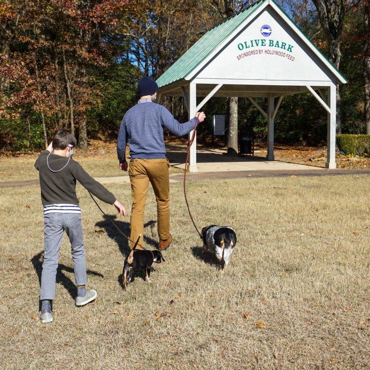 Day Trip: DeSoto County, Mississippi